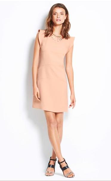 Ann Taylor Flutter Panel Dress.