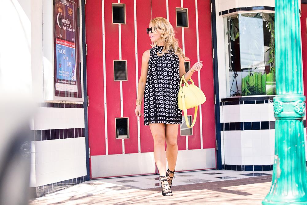 Torregrossa Handbags Edit By Lauren